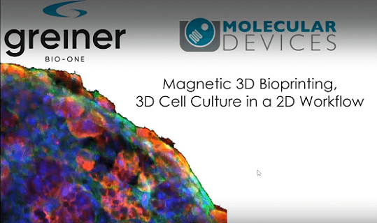 3D bioprinted tissues