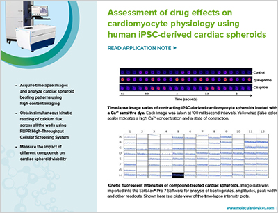 Drug Effects on Cardiomyocyte Physiology