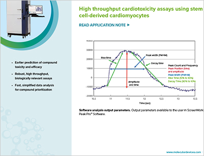 High throughput cardiotoxicity assays